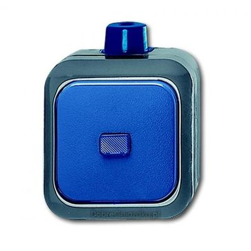 Przycisk zwierny ABB Busch-Duro 2000® WDI natynkowy